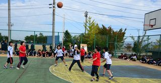 Basket_F032